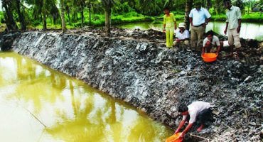 Xử lý nước bị nhiễm sắt - Công ty Môi trường Envico