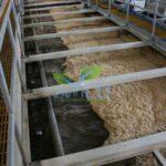 Ứng dụng phương pháp hóa lý vào xử lý nước thải- công ty môi trường envico